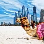 DU LỊCH DUBAI- ABU DHABI 5N4Đ TỪ SÀI GÒN