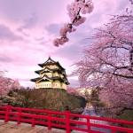 DU LỊCH NHẬT BẢN :TOKYO – NÚI PHÚ SĨ – HỒ ASHI 4N3Đ